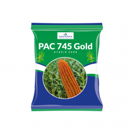 PAC 745 Gold